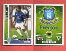 Everton Tim Cahill 88 (MPS)